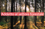 forest.logo